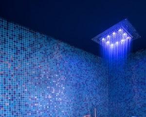 La Zagaleta blue shower